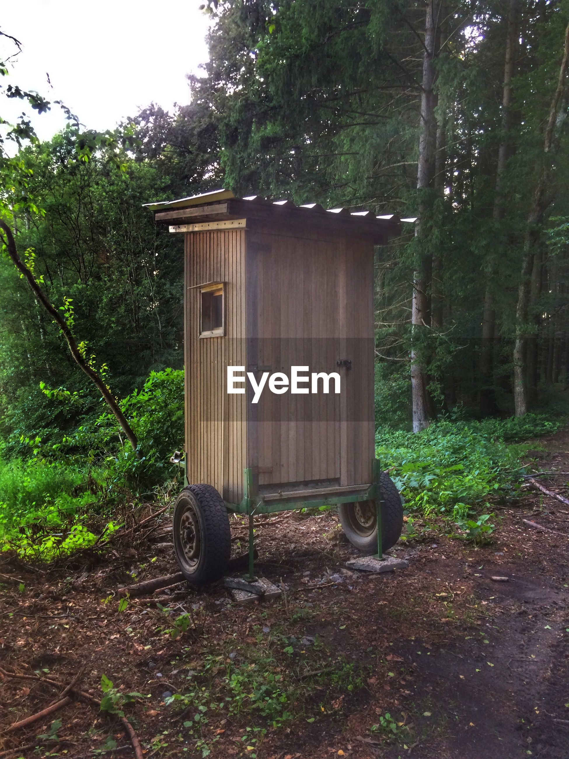 Portable toilet against trees in forest