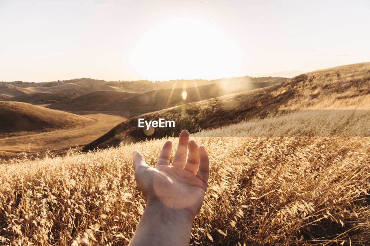 Cropped Image Of Hand Over Field On Sunny Day