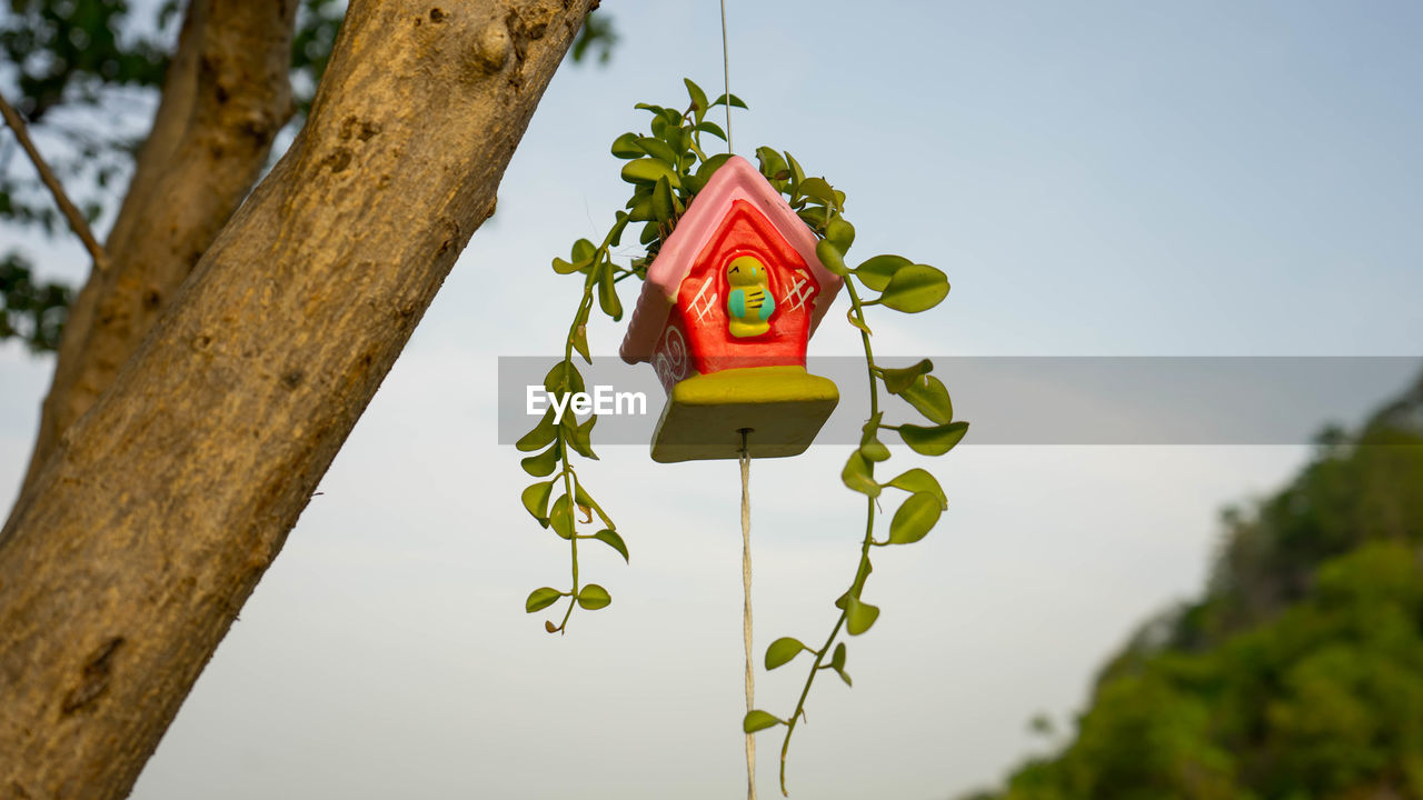 LOW ANGLE VIEW OF BIRDHOUSE HANGING AGAINST TREE TRUNK
