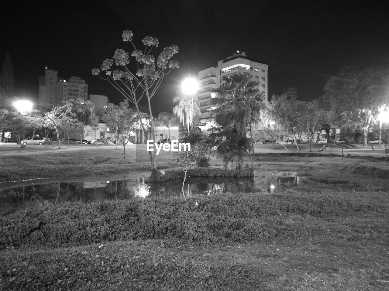 night, illuminated, architecture, built structure, plant, building exterior, nature, street light, city, grass, lighting equipment, no people, tree, street, sky, park - man made space, park, motion, outdoors, building, spraying
