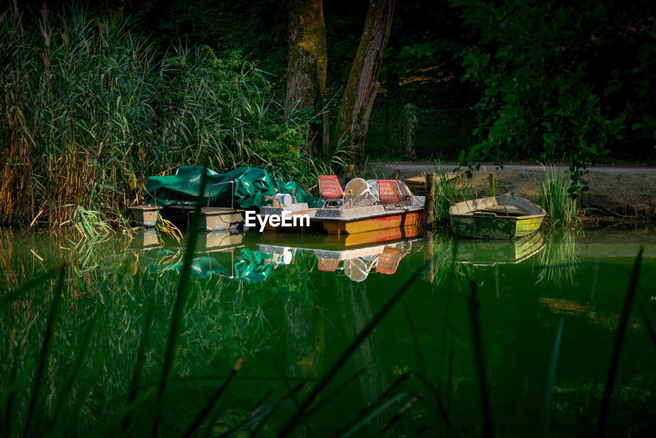 water, nautical vessel, plant, reflection, mode of transportation, nature, transportation, lake, tree, moored, green color, waterfront, tranquility, day, tranquil scene, outdoors, no people, growth, beauty in nature, floating on water