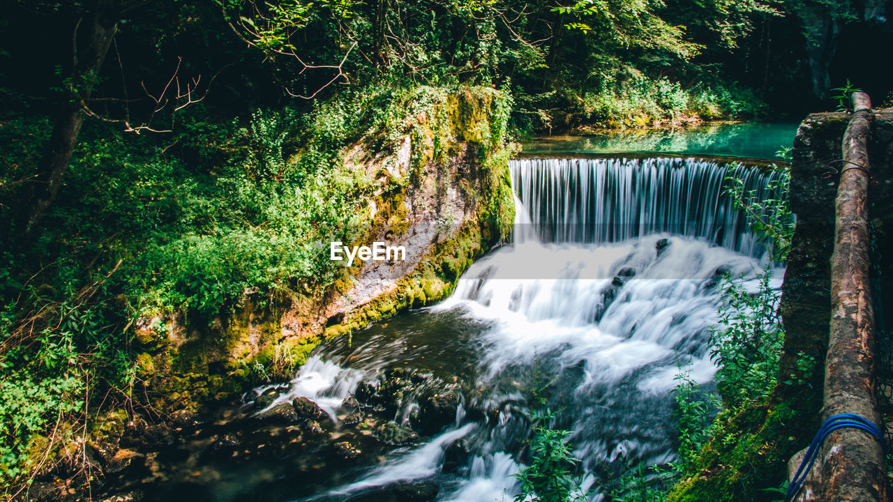 tree, water, plant, scenics - nature, forest, waterfall, motion, long exposure, flowing water, beauty in nature, nature, blurred motion, land, rock, no people, environment, growth, flowing, rock - object, outdoors, power in nature, rainforest, falling water, running water