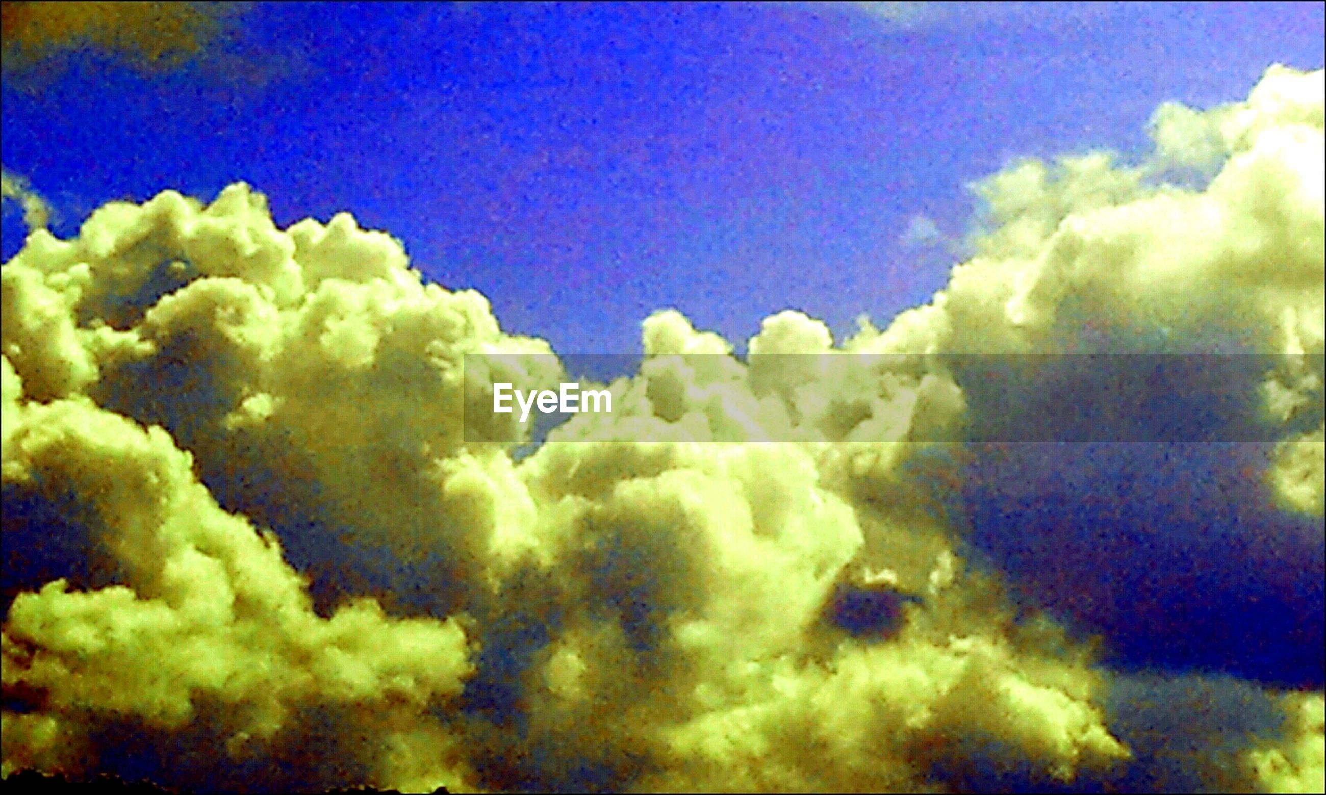blue, beauty in nature, green color, nature, sky, yellow, close-up, no people, low angle view, freshness, tranquility, scenics, cloud - sky, outdoors, backgrounds, tranquil scene, day, growth, idyllic, green