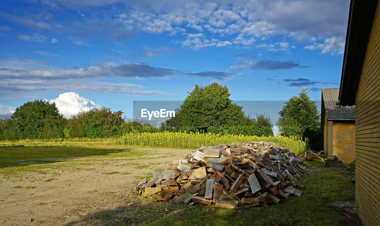 tree, plant, cloud - sky, sky, nature, log, wood, stack, firewood, grass, timber, day, no people, environment, field, land, wood - material, landscape, green color, architecture, outdoors