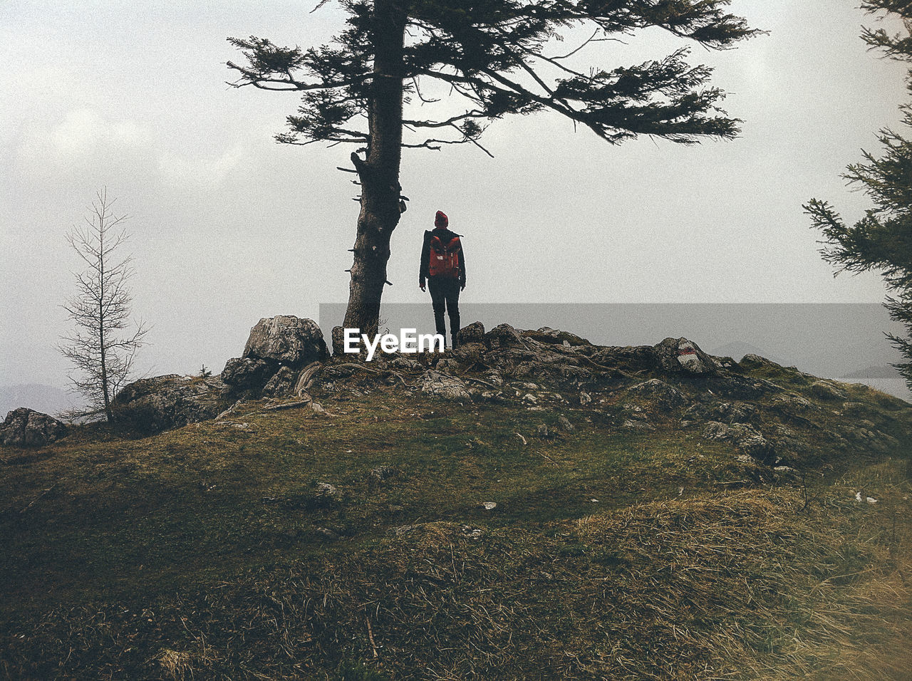 Rear view of man standing on hill against sky