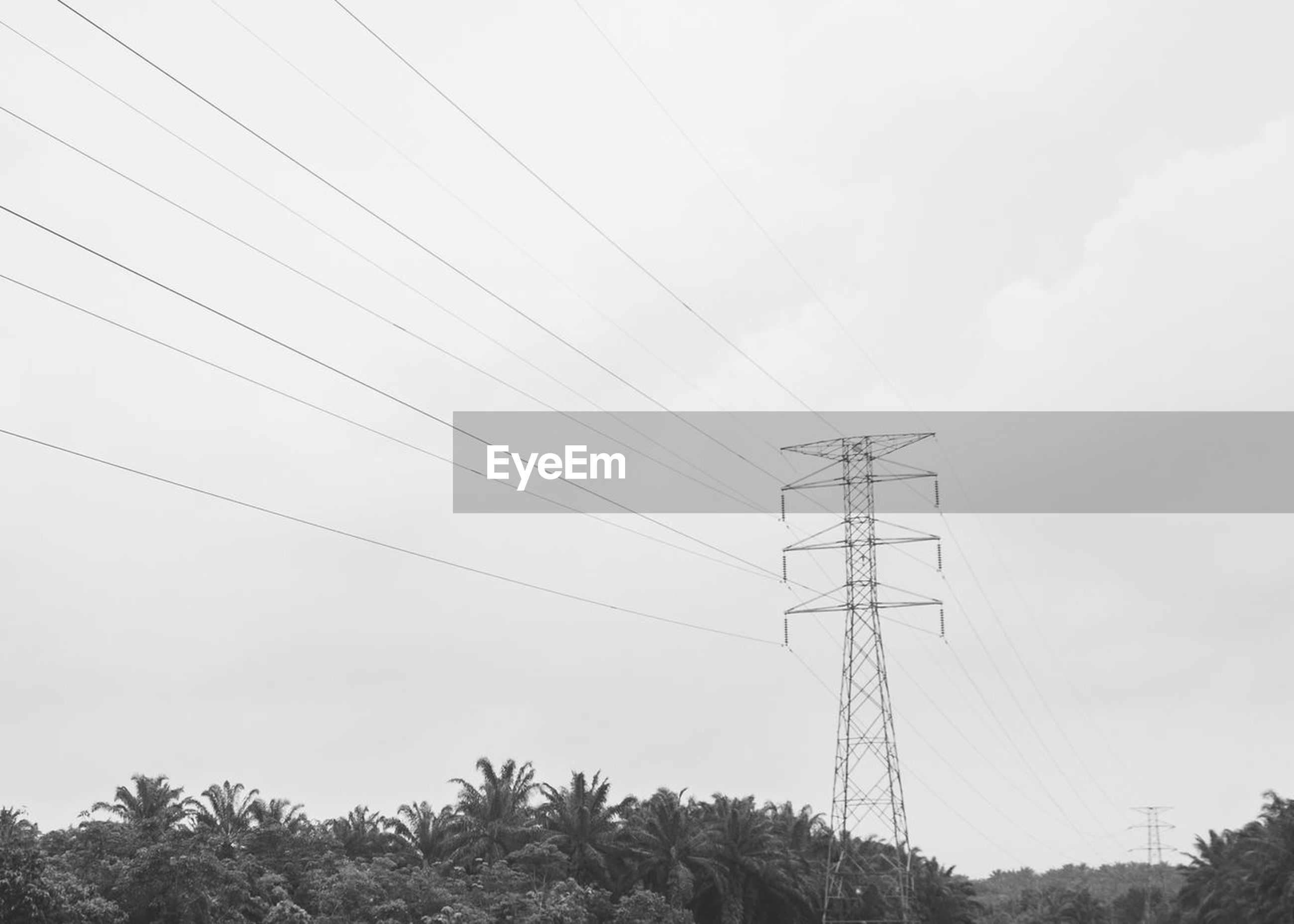 cable, connection, electricity, electricity pylon, power supply, power line, fuel and power generation, low angle view, technology, day, electricity tower, sky, outdoors, no people, tree, nature