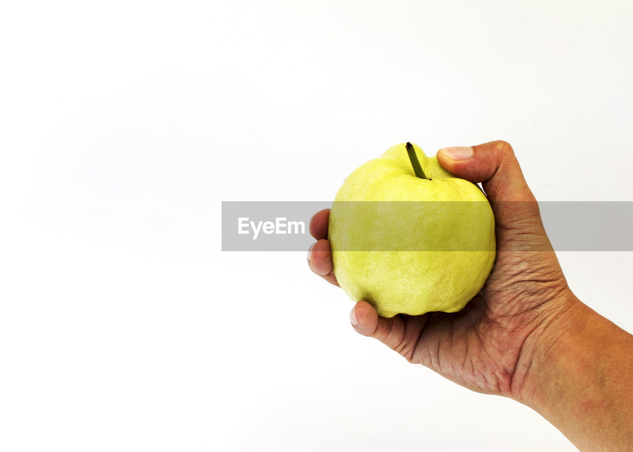 studio shot, hand, human body part, human hand, holding, healthy eating, white background, fruit, wellbeing, copy space, food, one person, food and drink, indoors, freshness, apple - fruit, unrecognizable person, close-up, body part, apple, human limb, finger, ripe