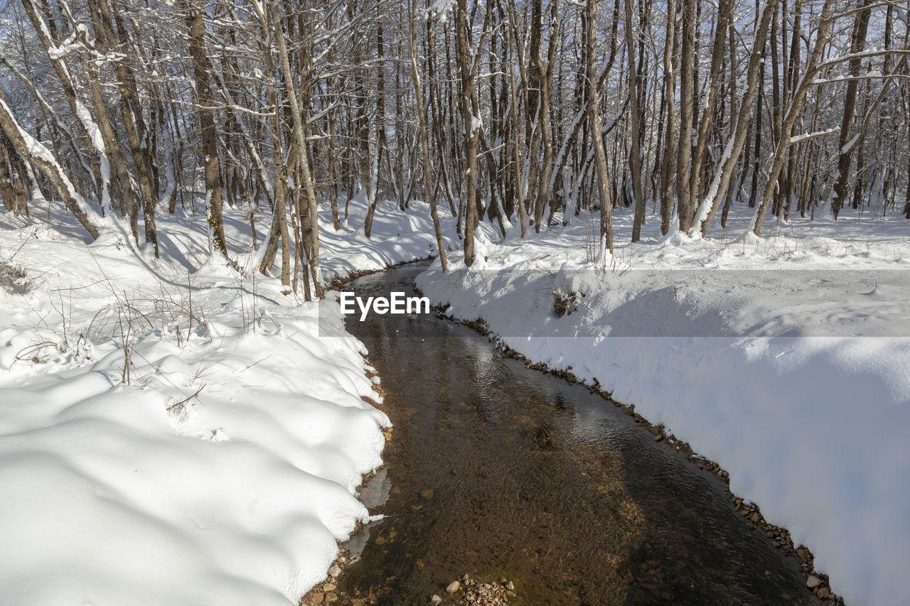 Scenic view of stream in winter