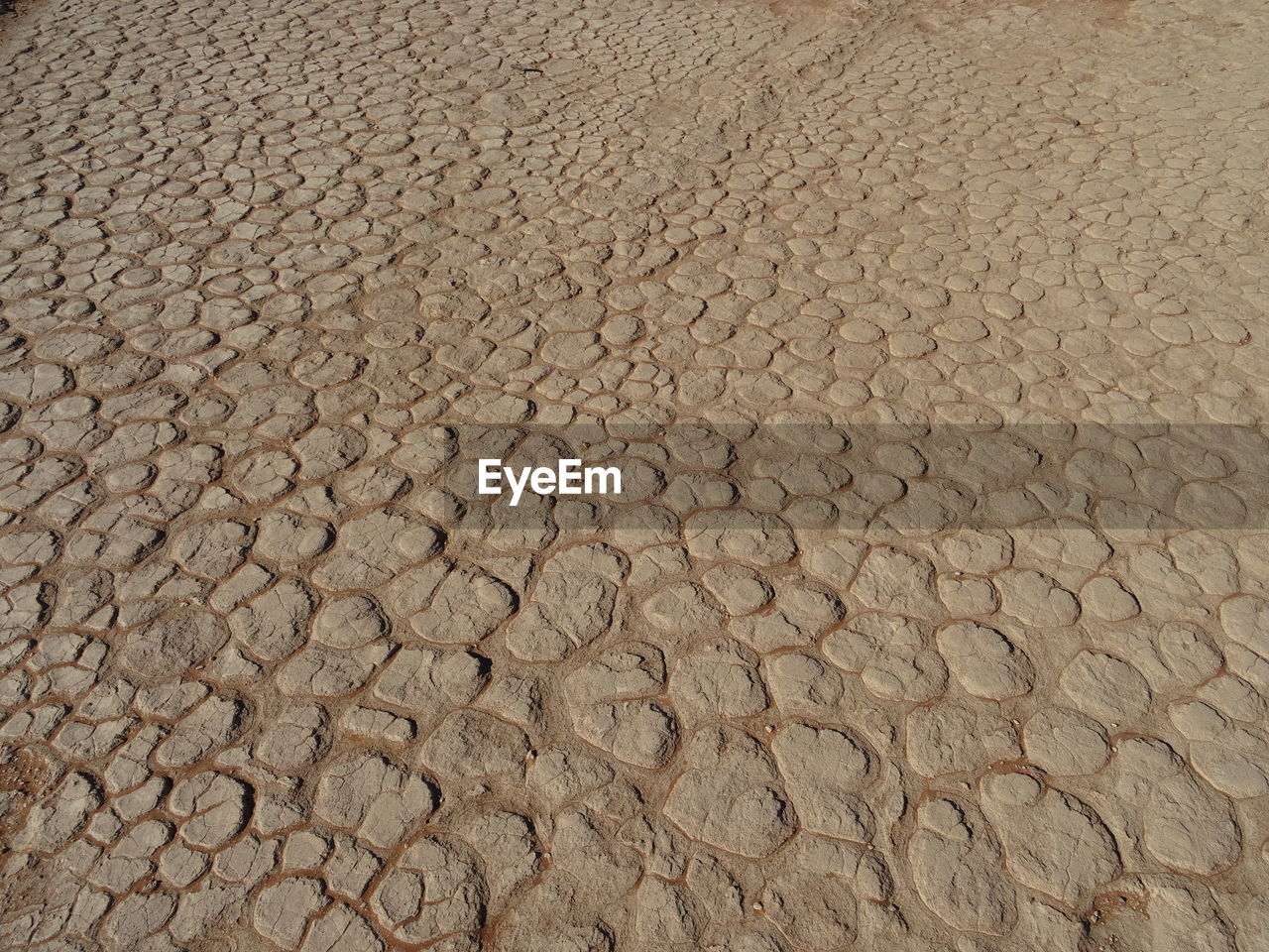 arid climate, cracked, drought, desert, backgrounds, textured, dry, pattern, nature, barren, full frame, mud, sand, outdoors, brown, no people, day, landscape, clay, close-up, salt - mineral