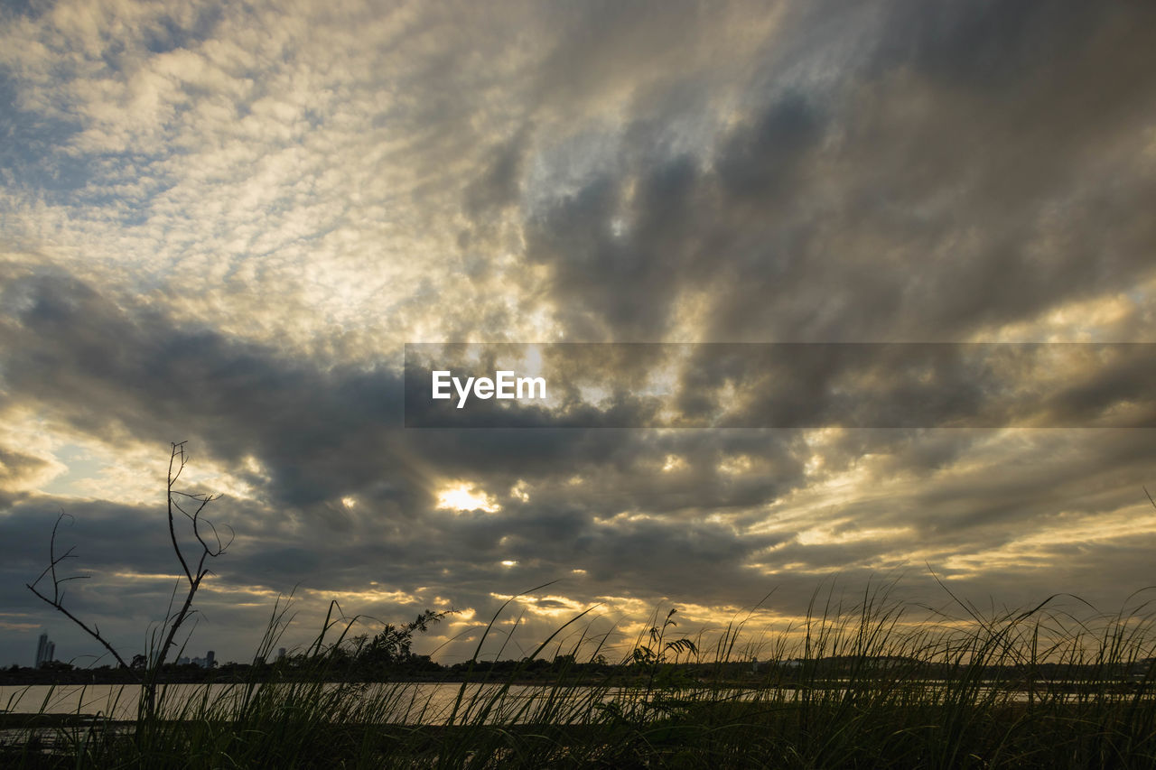 cloud - sky, sky, beauty in nature, tranquility, scenics - nature, sunset, tranquil scene, plant, nature, field, no people, land, environment, growth, landscape, outdoors, non-urban scene, overcast, grass