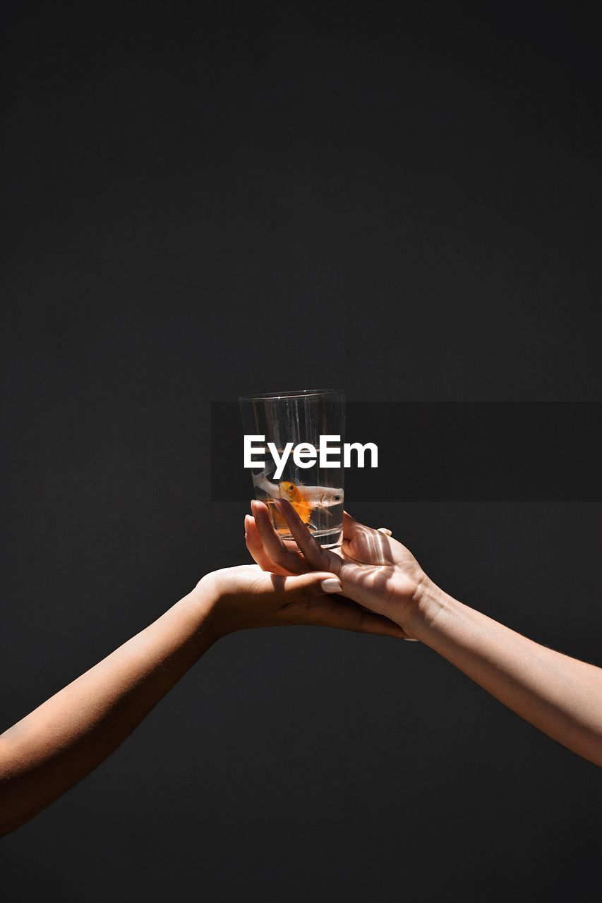 Cropped image of hands holding fishes in glass against black background