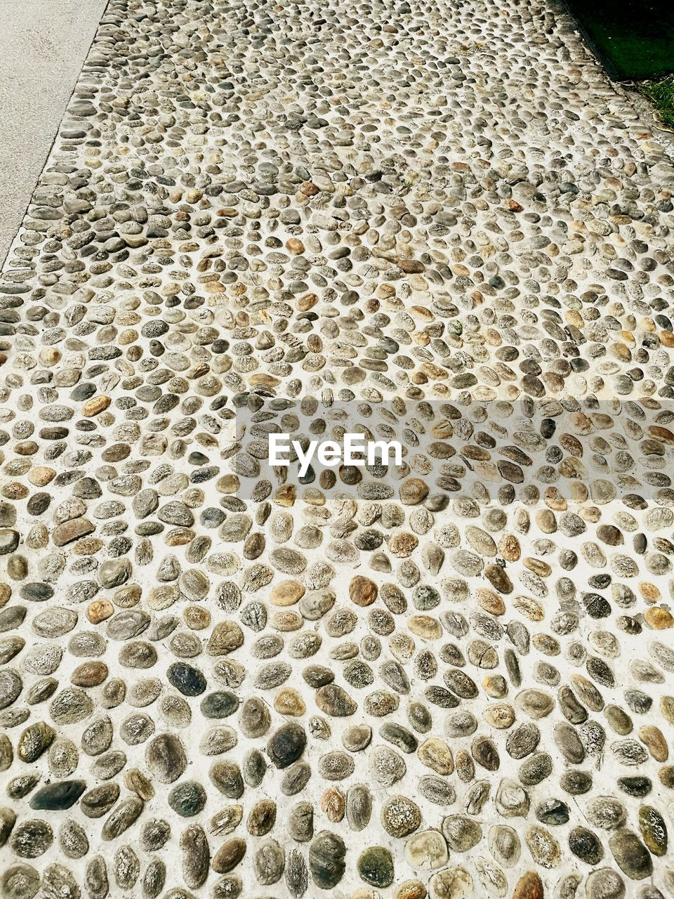 no people, pattern, honeycomb, high angle view, indoors, day, close-up, nature