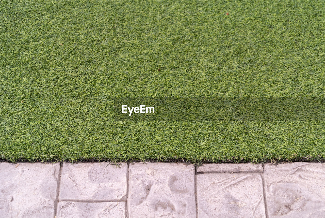 green color, grass, plant, no people, day, nature, outdoors, wall - building feature, backgrounds, full frame, growth, textured, lawn, high angle view, footpath, close-up, field, architecture, wall, environment, turf, paving stone, hedge, concrete