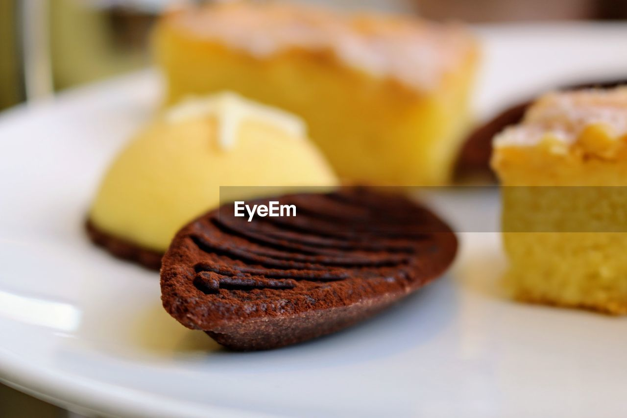 food and drink, food, plate, indulgence, sweet food, close-up, temptation, dessert, ready-to-eat, selective focus, indoors, no people, freshness, serving size, unhealthy eating, day