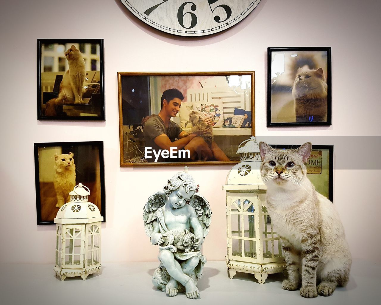 picture frame, human representation, male likeness, sitting, men, statue, leisure activity, indoors, togetherness, domestic cat, arts culture and entertainment, photograph, sculpture, lifestyles, technology, pets, mammal, young adult, day, people