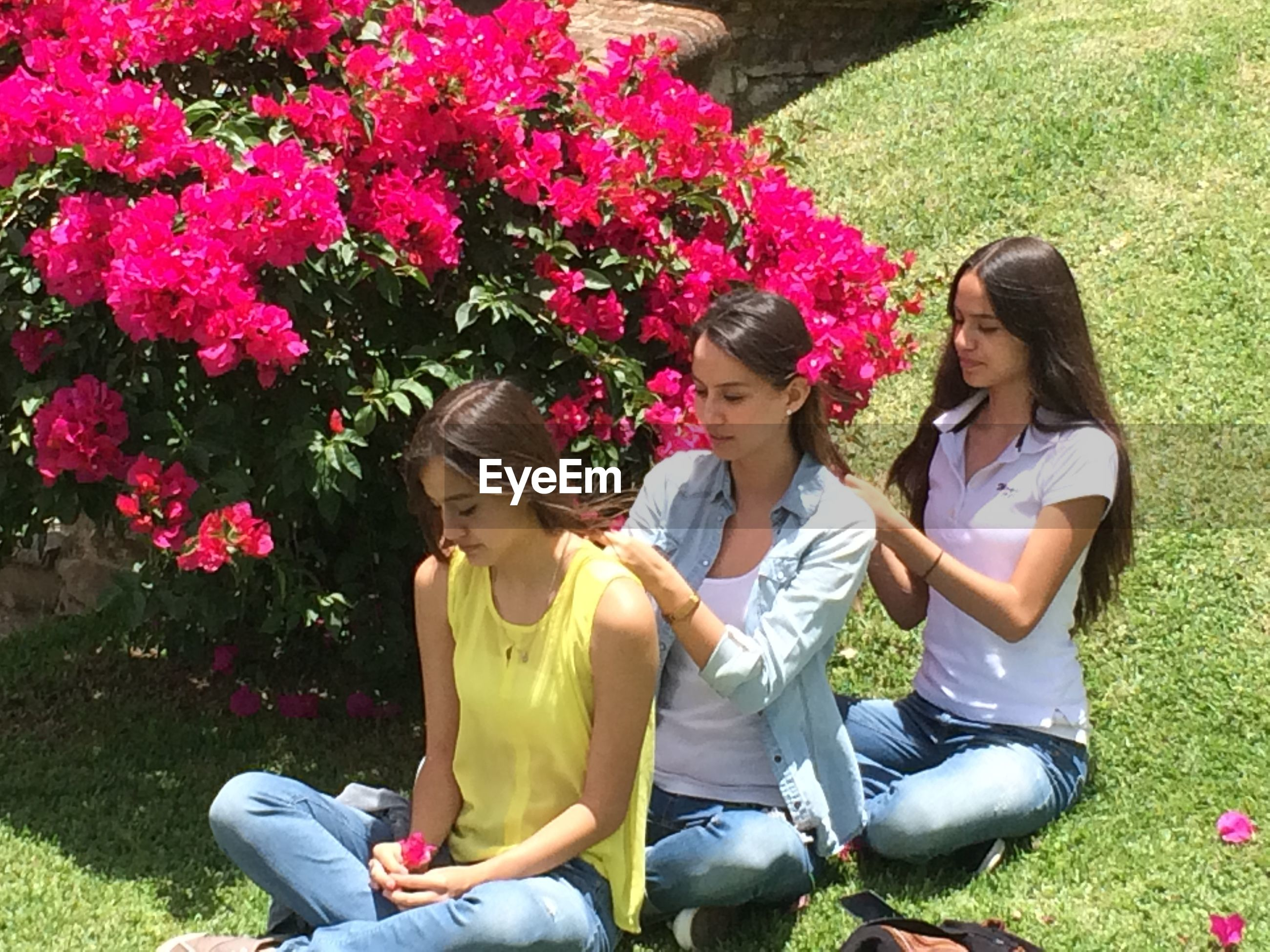 Young female friends tying hair of each other while sitting at park