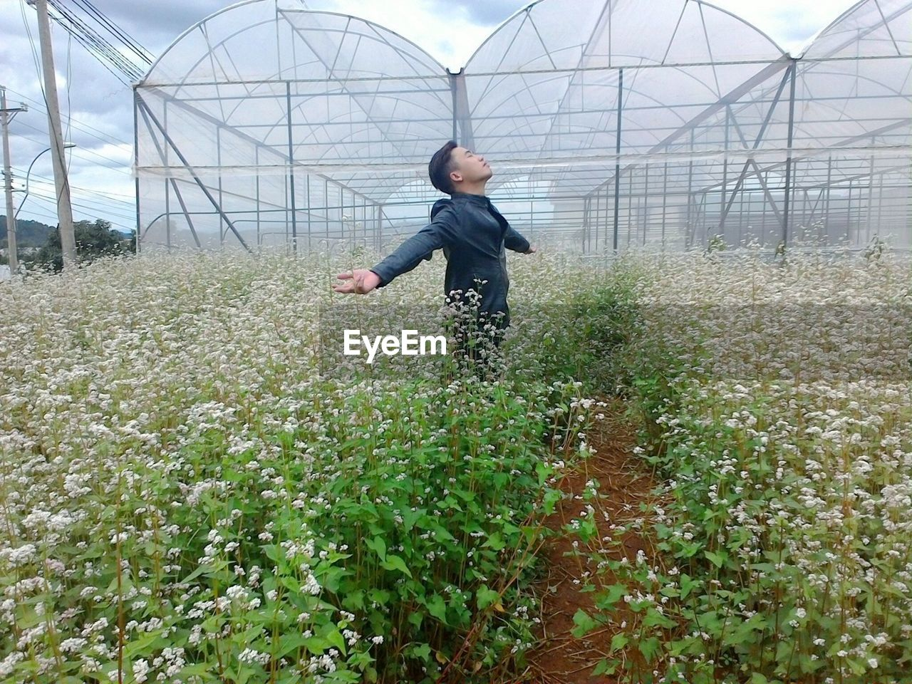 Young man standing with arms outstretched amidst flowering plants against greenhouse