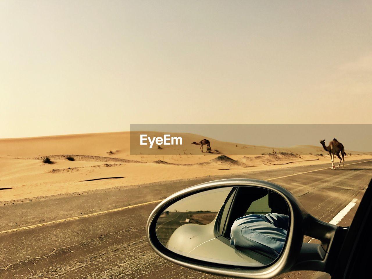 Car in desert against clear sky