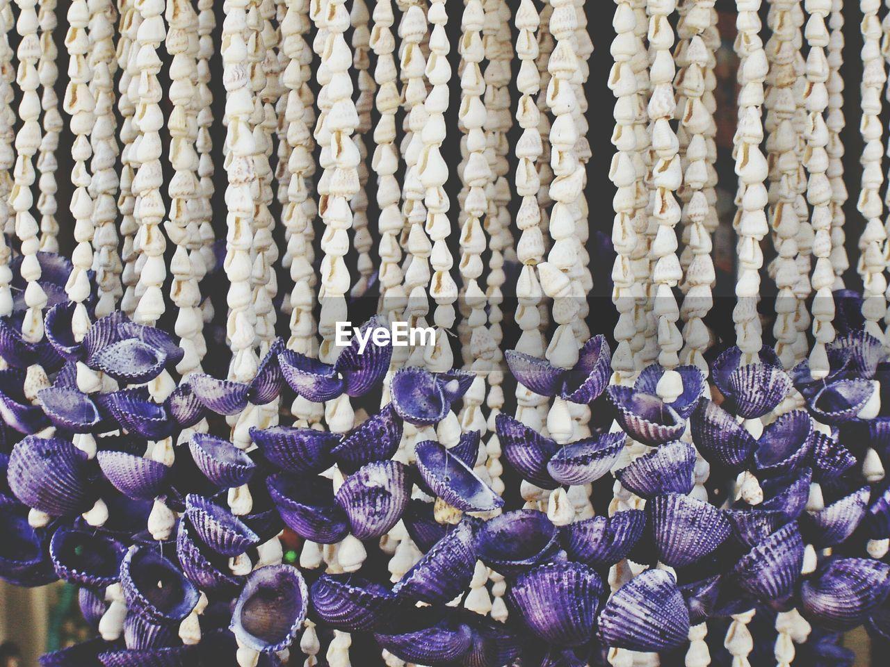 Close-Up Of Seashell Decorations