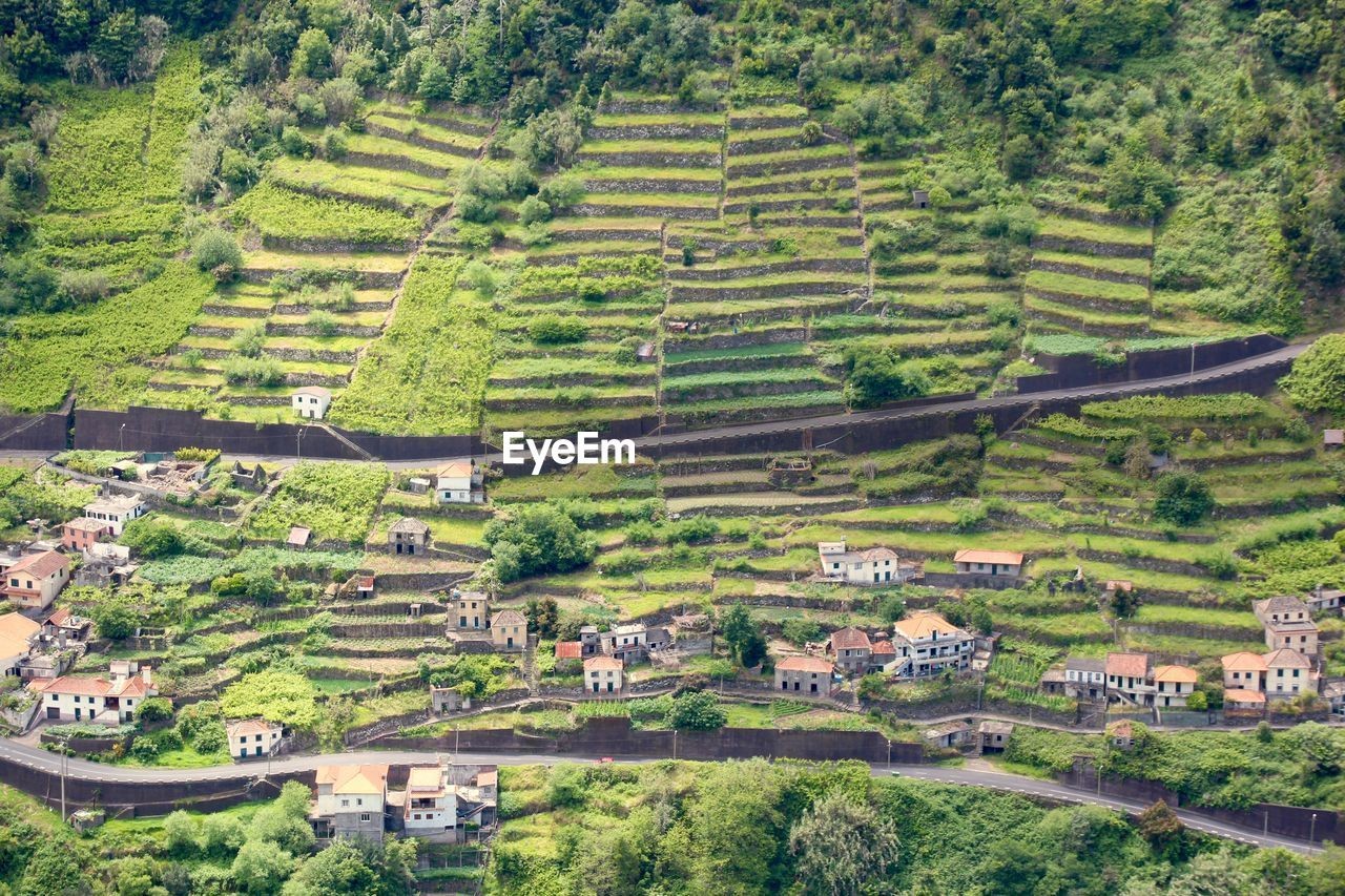 agriculture, landscape, scenics, rural scene, farm, field, patchwork landscape, village, house, high angle view, nature, tranquil scene, tree, beauty in nature, tranquility, day, outdoors, no people, green color, building exterior, built structure, terraced field, travel destinations, growth, architecture