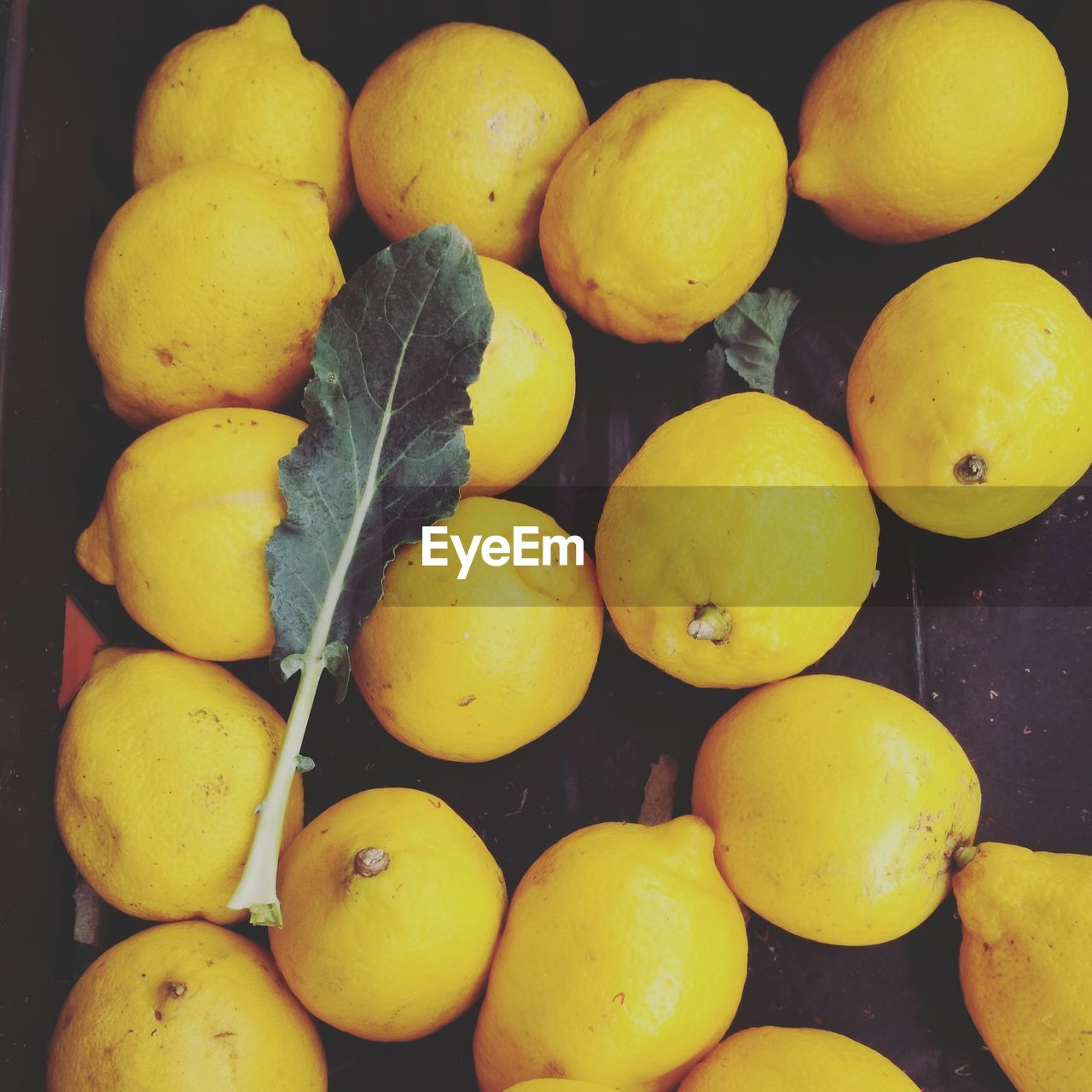 yellow, fruit, food, healthy eating, no people, citrus fruit, full frame, freshness, close-up, outdoors, day
