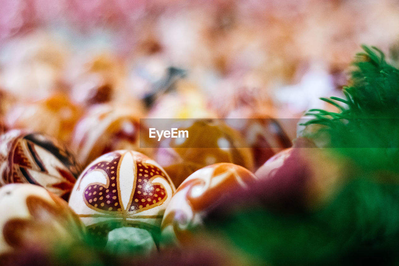 selective focus, close-up, freshness, indoors, food, food and drink, one person, real people, still life, human hand, human body part, hand, celebration, day, decoration, event, plant