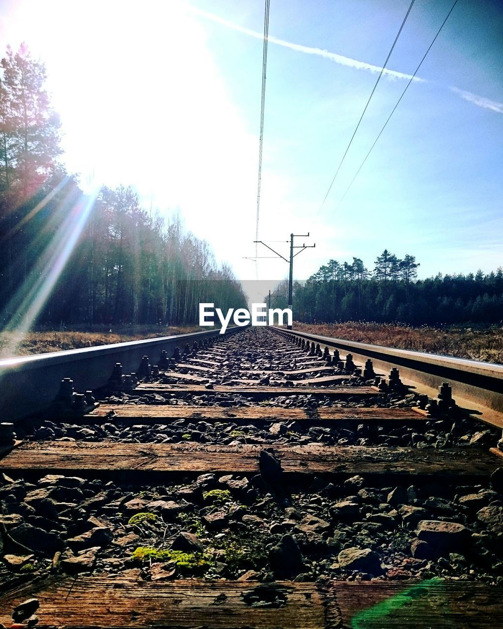 railroad track, transportation, rail transportation, day, sky, no people, railroad tie, sunlight, the way forward, nature, outdoors, tree, beauty in nature