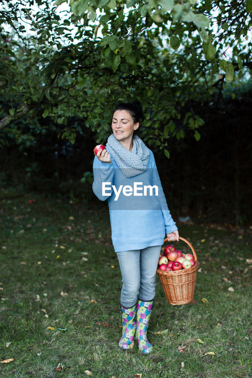 Happy Beautiful Woman Holding Apple With Basket At Orchard