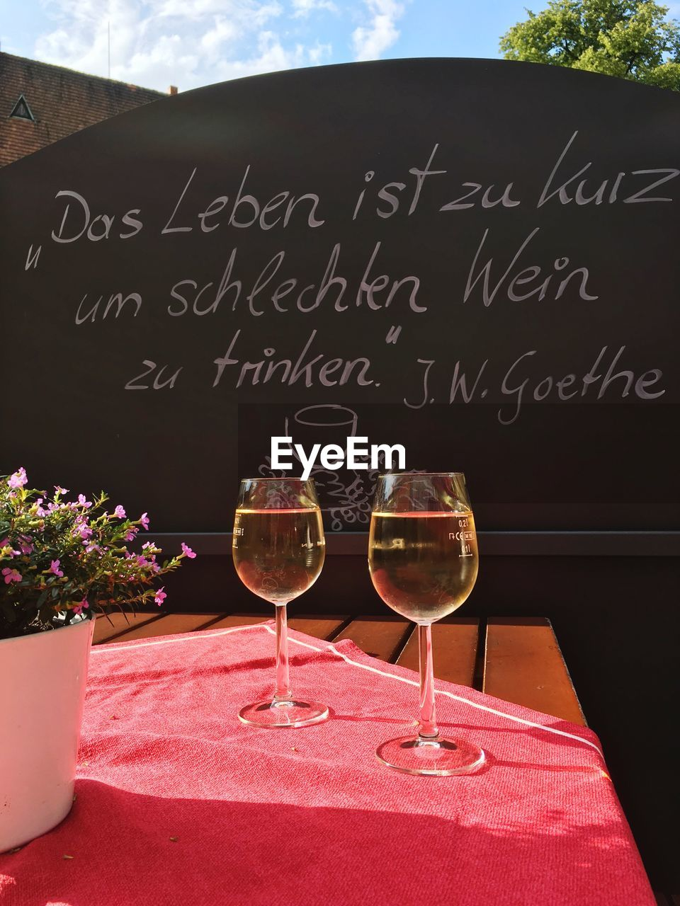 alcohol, glass, wine, plant, refreshment, food and drink, table, flower, text, flowering plant, wineglass, drink, no people, nature, freshness, western script, communication, day, food, glass - material