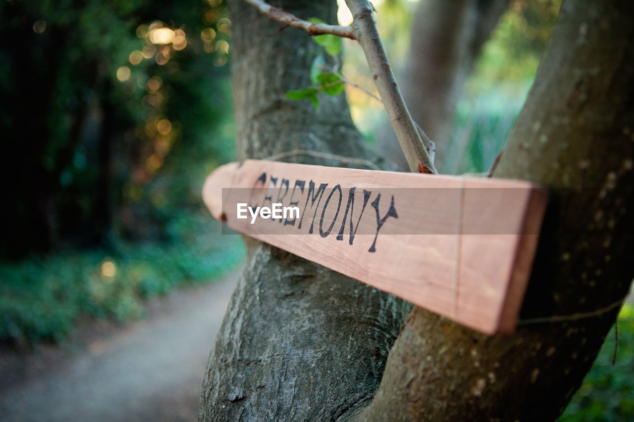 text, western script, communication, tree trunk, tree, trunk, plant, information, wood - material, sign, day, information sign, forest, no people, focus on foreground, selective focus, land, nature, guidance, capital letter, outdoors, message