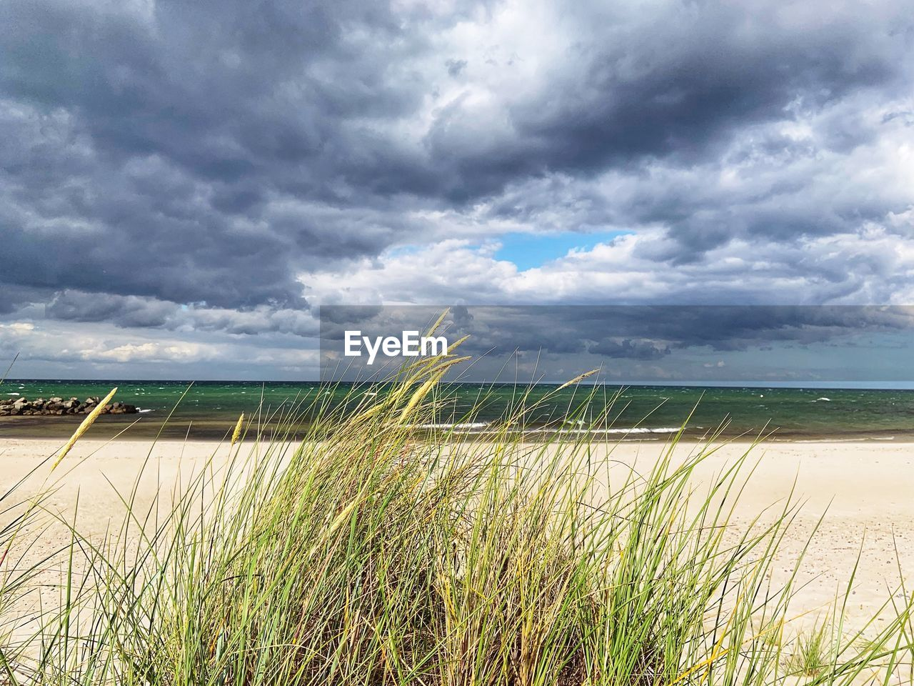 cloud - sky, sky, water, plant, land, grass, beauty in nature, beach, sea, nature, tranquility, day, growth, scenics - nature, tranquil scene, horizon, horizon over water, no people, sand, marram grass, outdoors, timothy grass