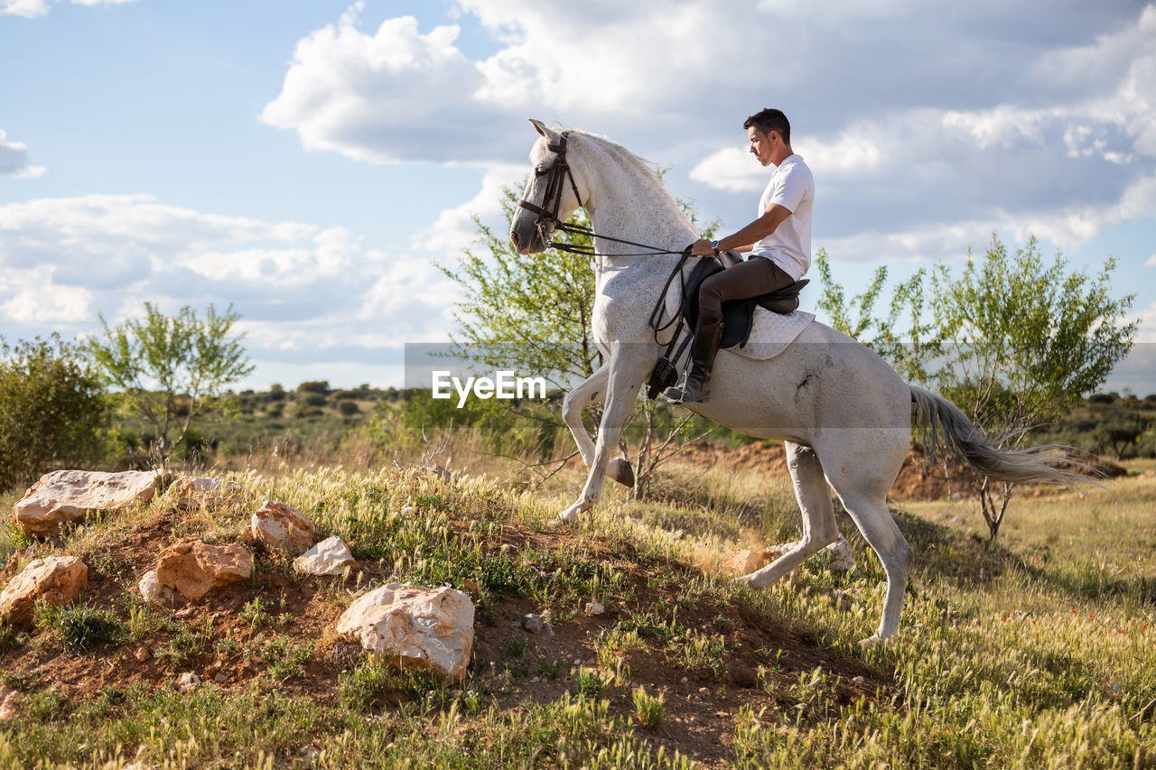 VIEW OF HORSE RIDING