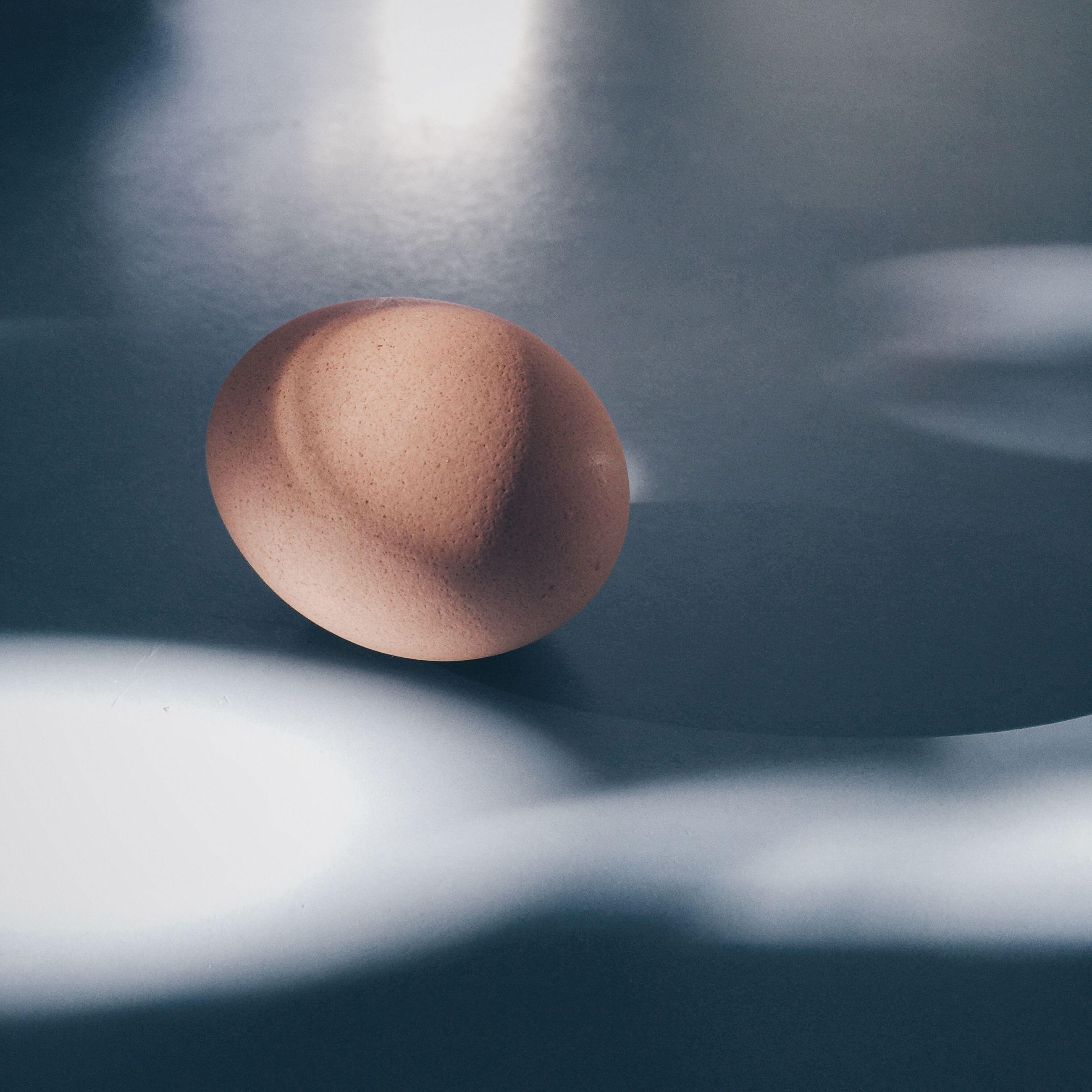 High angle view of brown egg on table