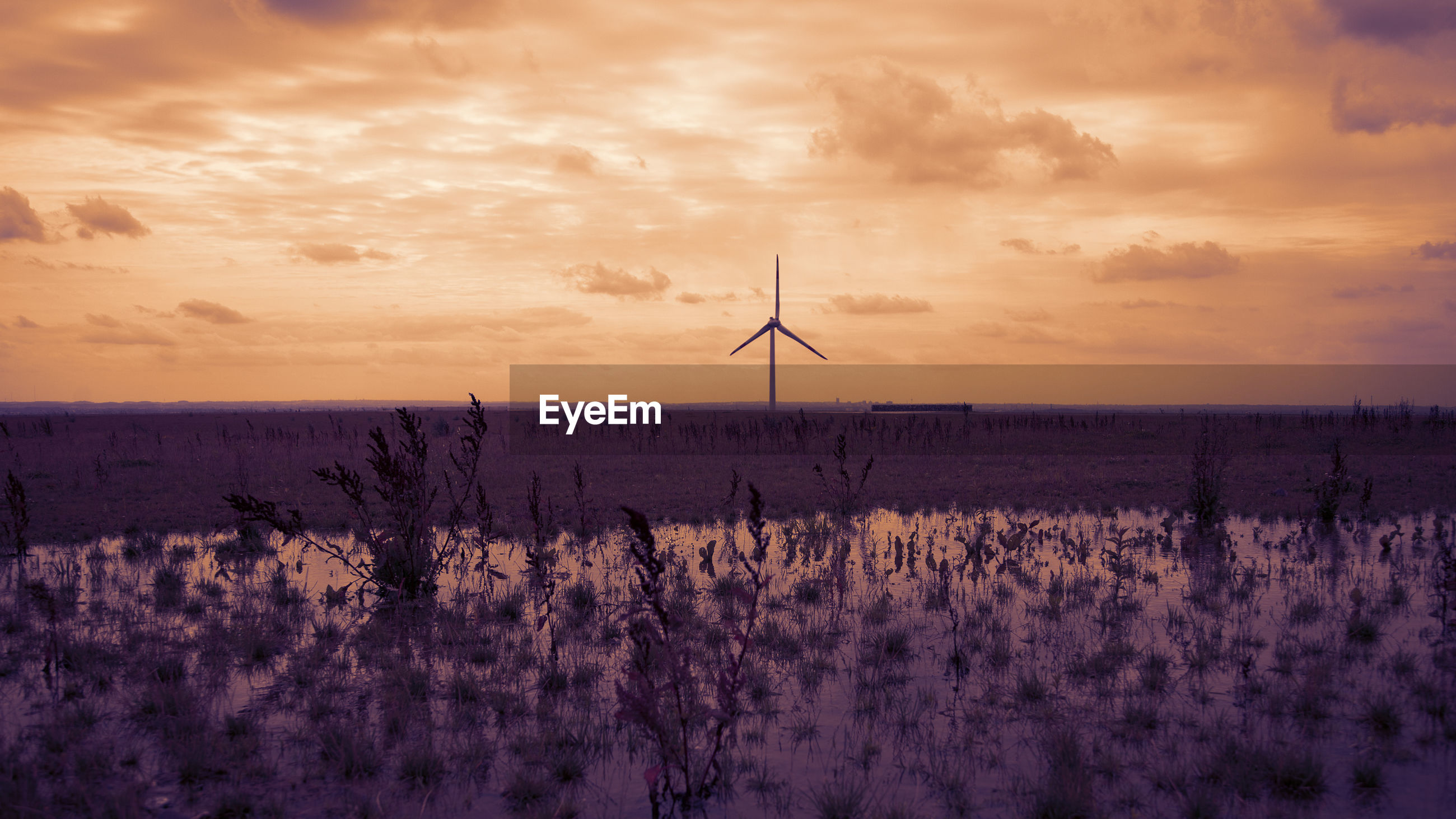 VIEW OF WIND TURBINES ON FIELD AGAINST SKY