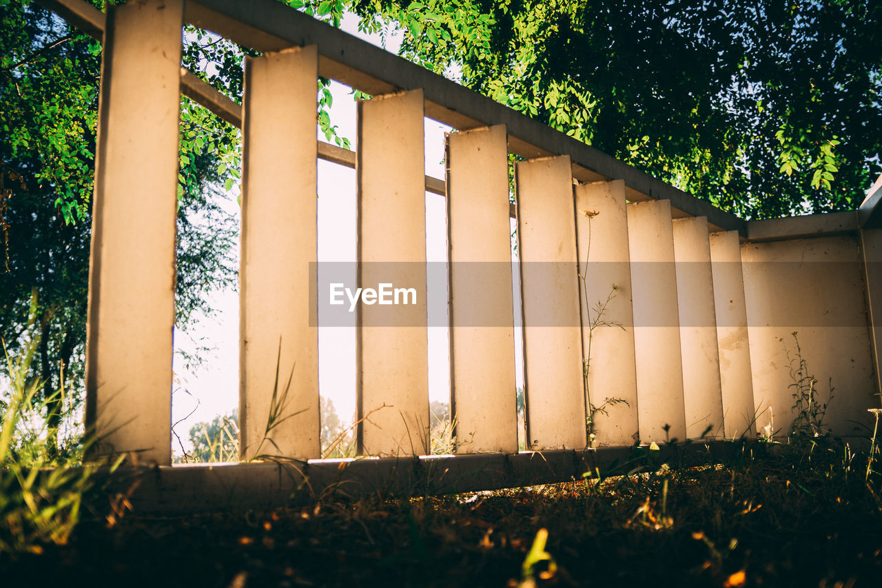 plant, built structure, architecture, tree, nature, no people, day, growth, outdoors, building exterior, building, grass, land, sunlight, field, in a row, architectural column, wood - material, low angle view, window