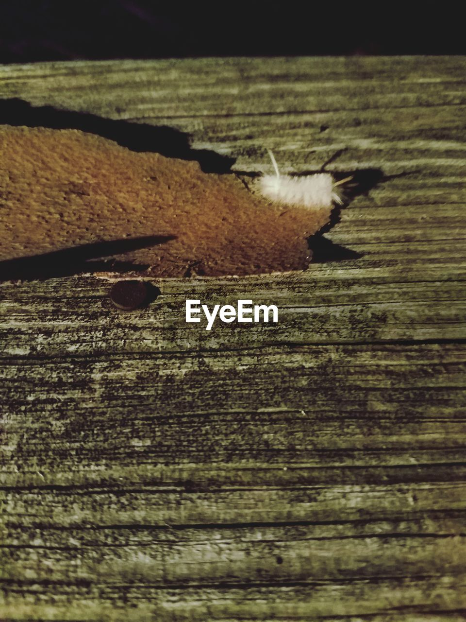 no people, textured, wood - material, outdoors, day, close-up, nature, beach, water, beauty in nature