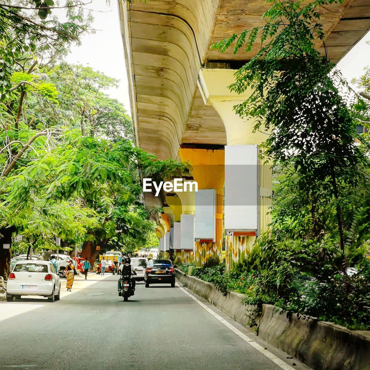 ROAD AMIDST TREES AND BUILDINGS