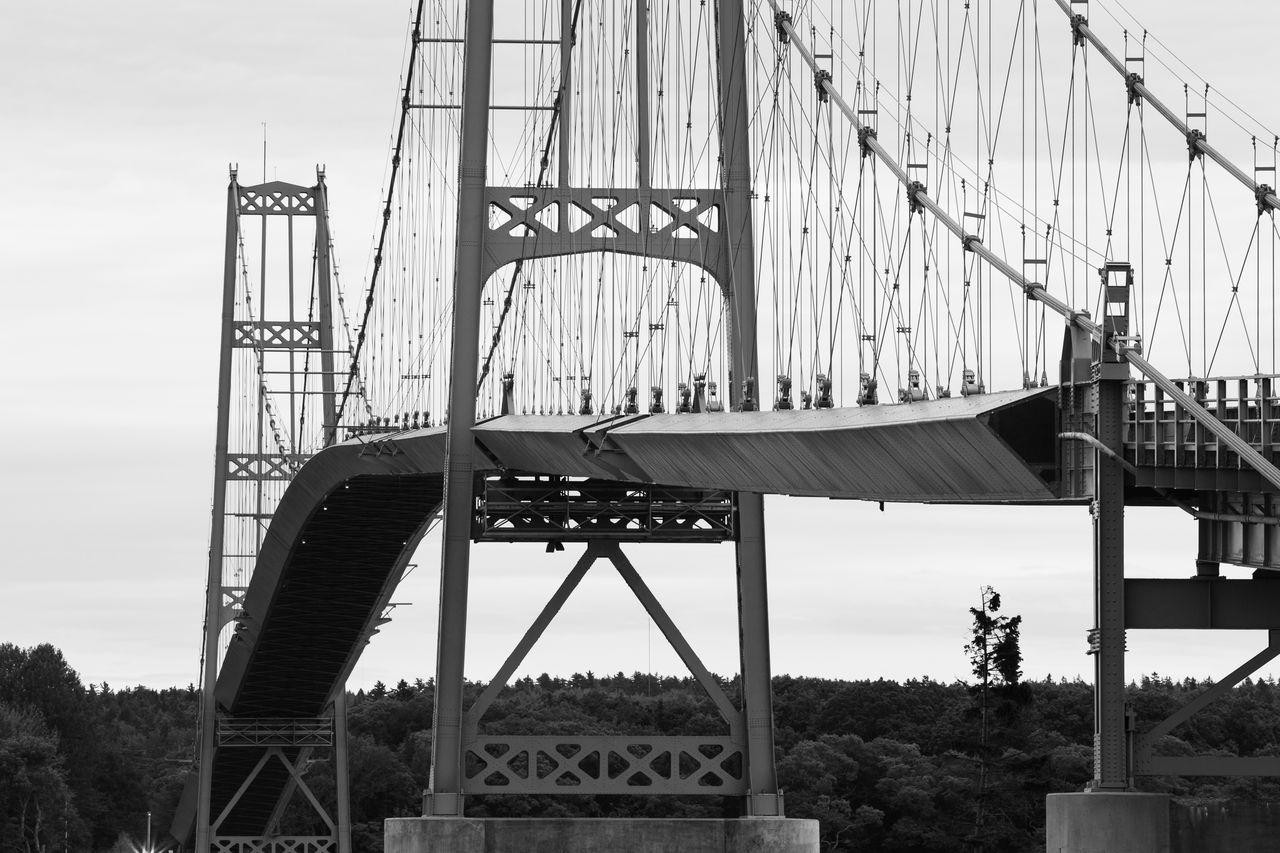 built structure, architecture, sky, bridge, connection, engineering, transportation, nature, bridge - man made structure, day, low angle view, plant, suspension bridge, tree, outdoors, travel destinations, cloud - sky, city, metal