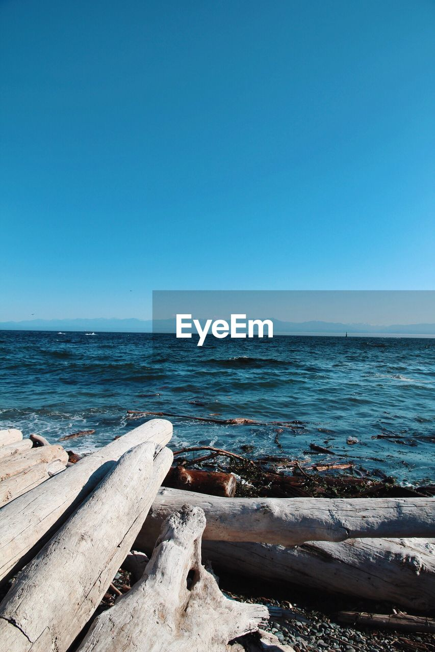 sea, water, sky, scenics - nature, clear sky, copy space, beauty in nature, horizon, horizon over water, beach, land, blue, tranquility, tranquil scene, nature, day, no people, wood - material, remote, outdoors, wood, driftwood