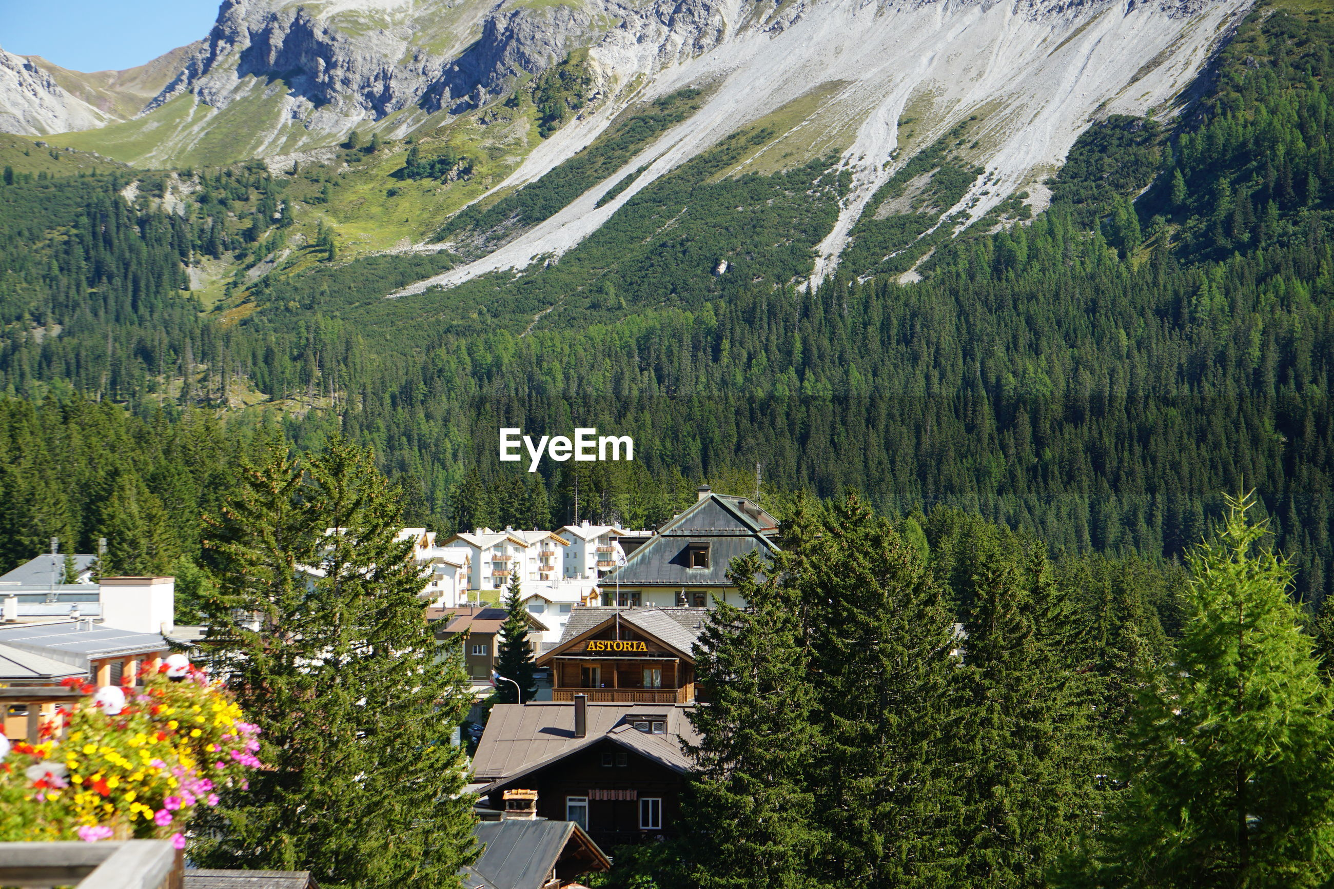 HIGH ANGLE VIEW OF TREES AND BUILDINGS AGAINST MOUNTAINS