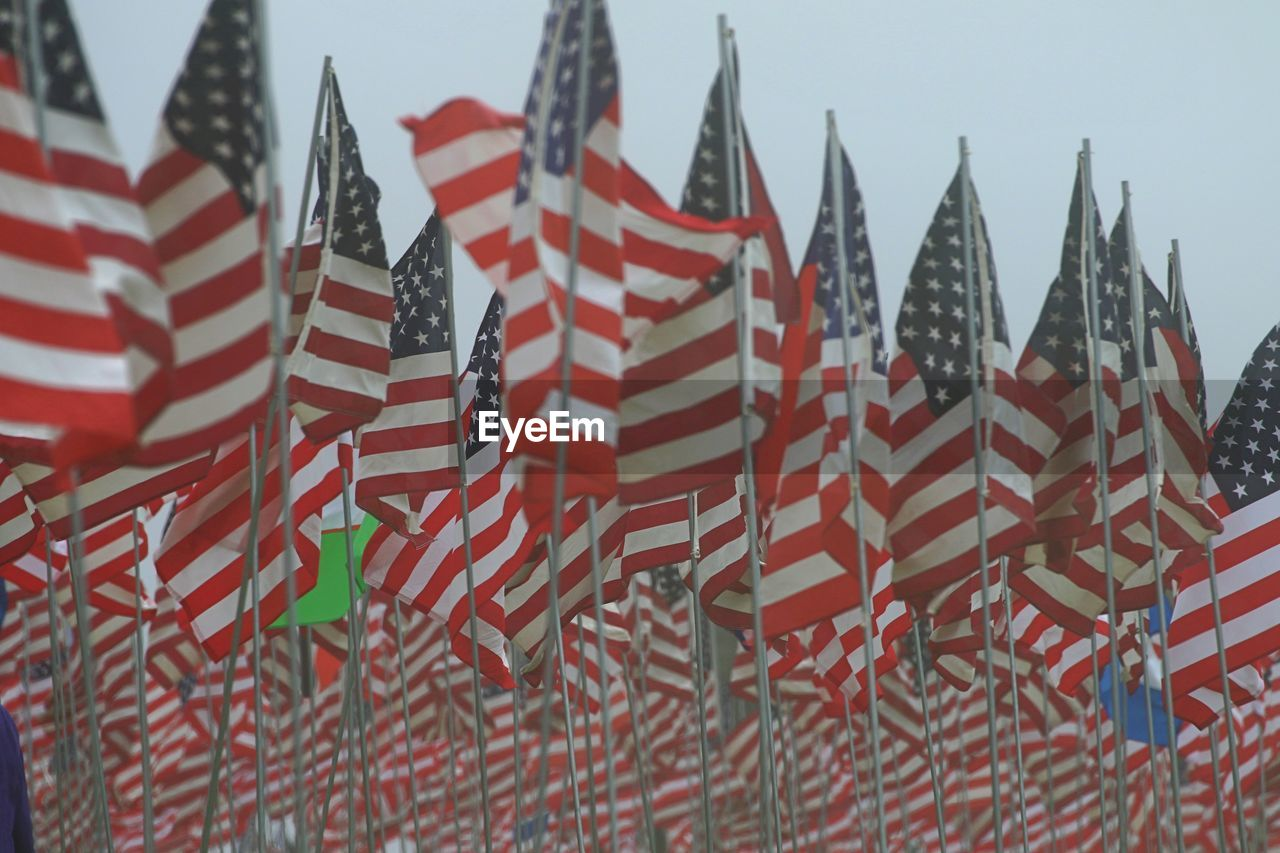 Large group of american flags