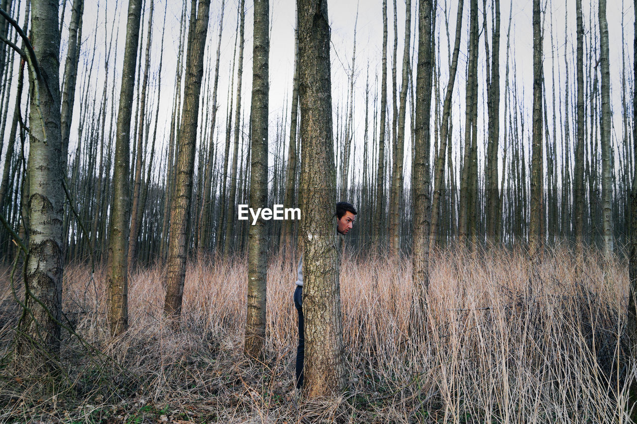 Man Hiding Behind Tree In Forest