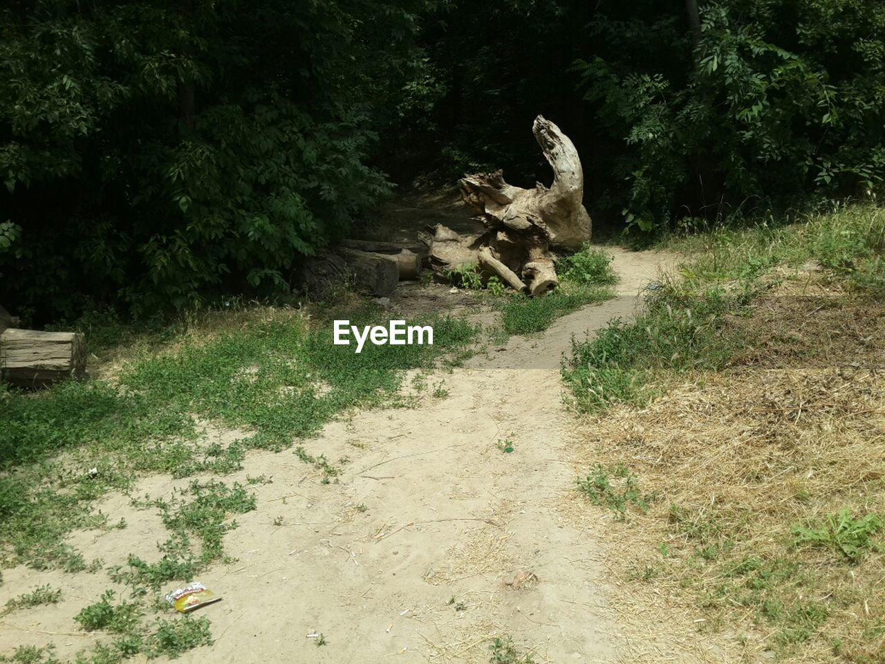 EyeEm Nature Lover Nature Eye4photography  Nature_collection