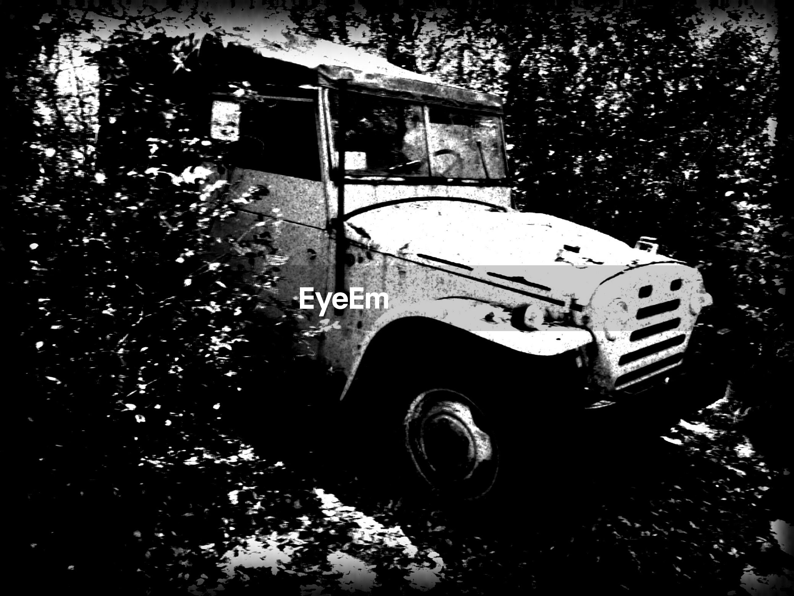 land vehicle, transportation, mode of transport, car, old-fashioned, stationary, tree, retro styled, vintage car, parked, building exterior, parking, old, abandoned, outdoors, street, built structure, day, travel, no people