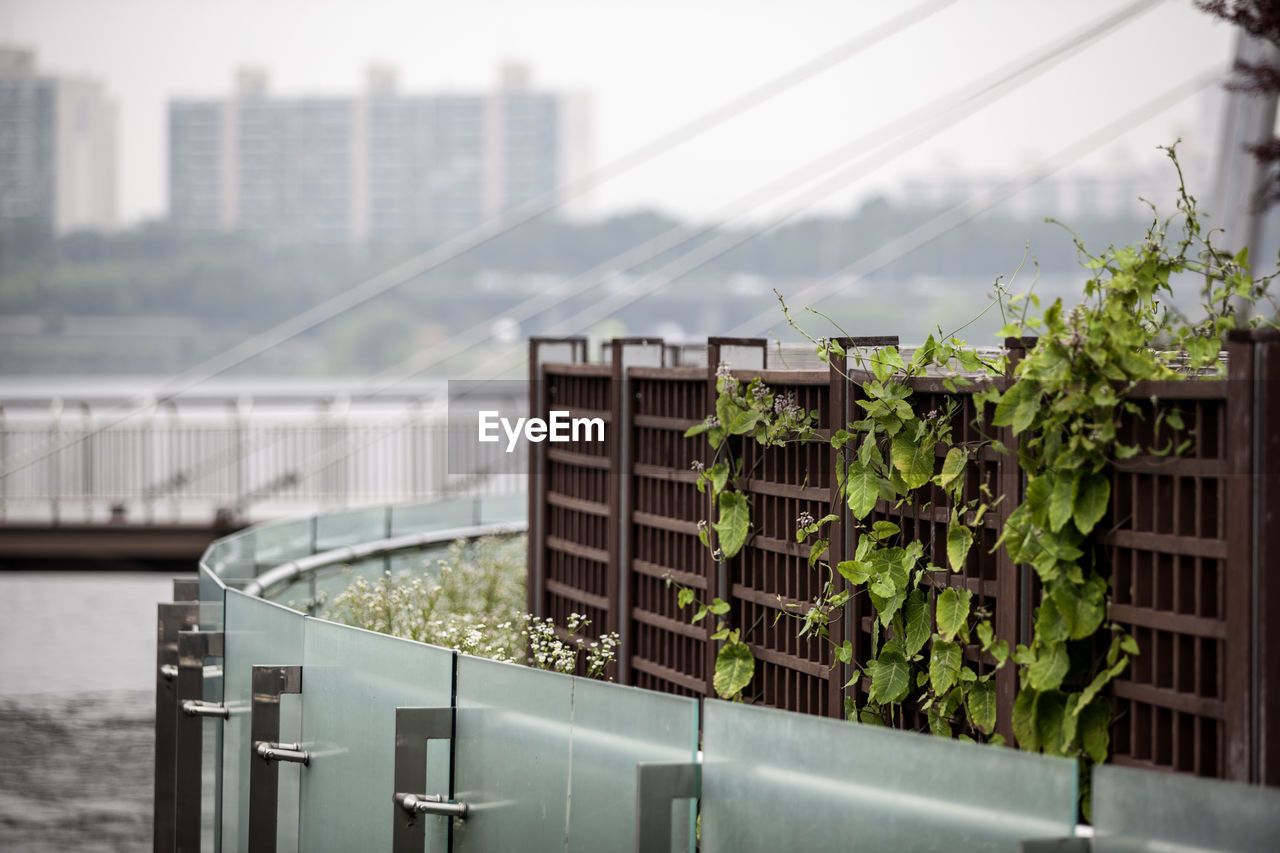 Fence By Han River