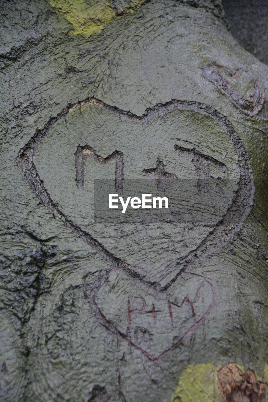 love, heart shape, text, no people, close-up, textured, tree trunk, tree, day, outdoors