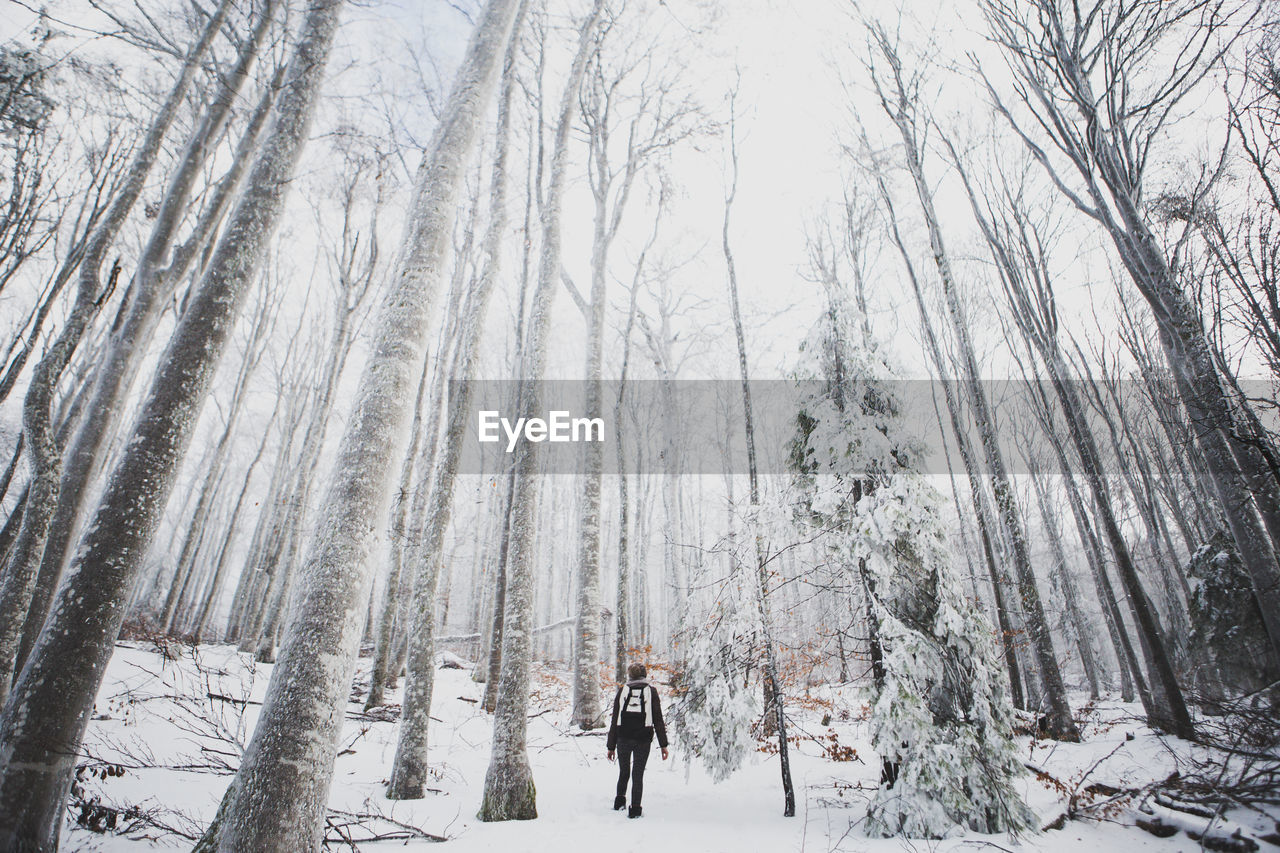 Rear View Of Woman On Snow Covered Landscape Against Sky