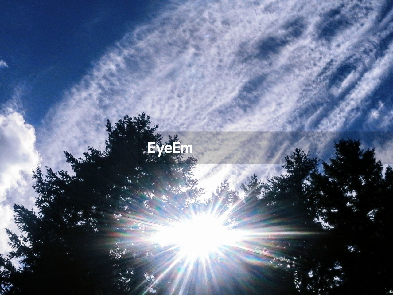 tree, sunbeam, sunlight, nature, low angle view, sky, beauty in nature, no people, scenics, silhouette, sun, tranquility, outdoors, day, growth, cloud - sky