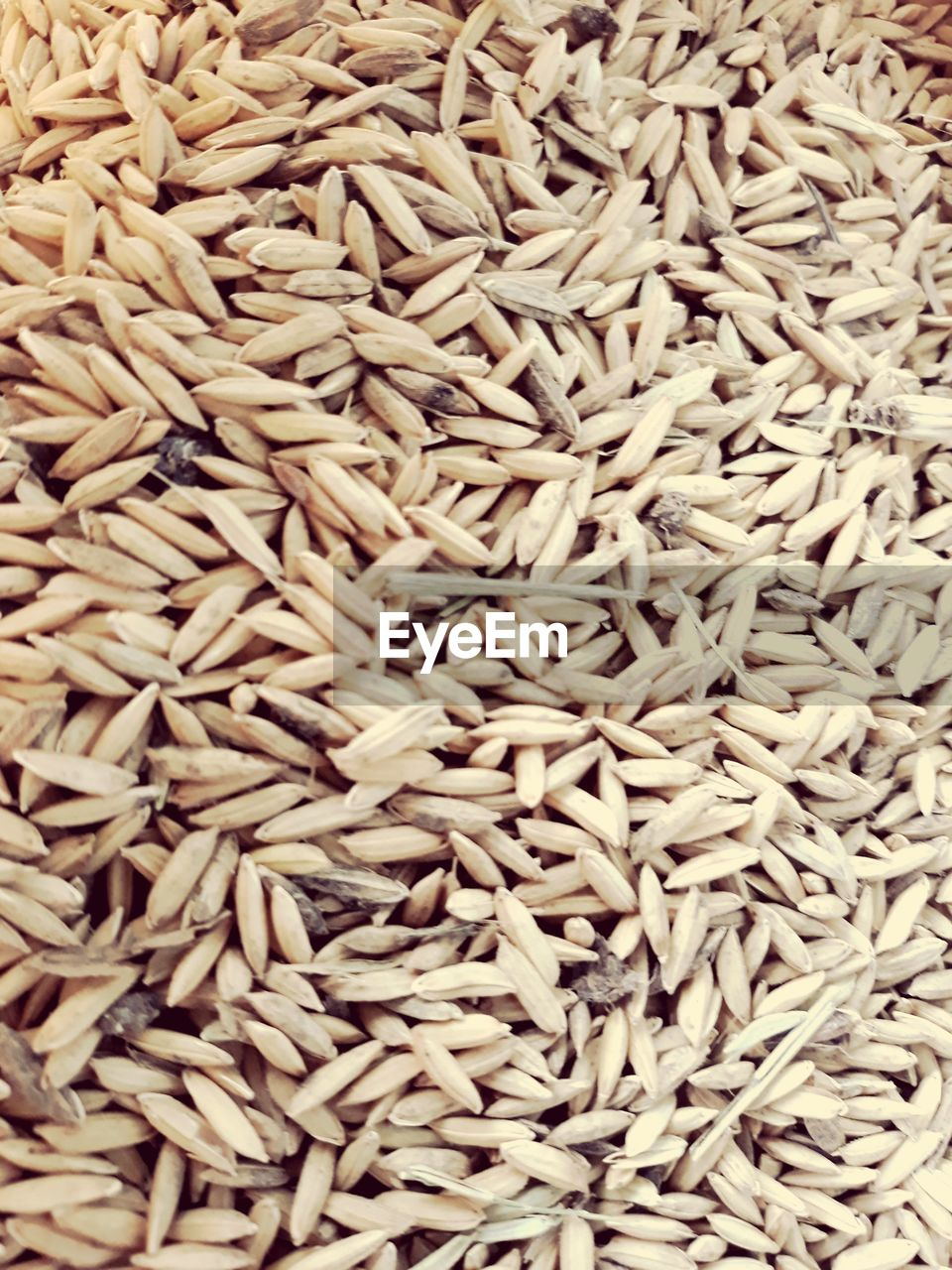full frame, backgrounds, large group of objects, food and drink, food, no people, raw food, healthy eating, still life, wellbeing, abundance, freshness, close-up, rice - food staple, indoors, heap, rice, directly above, brown, rice - cereal plant