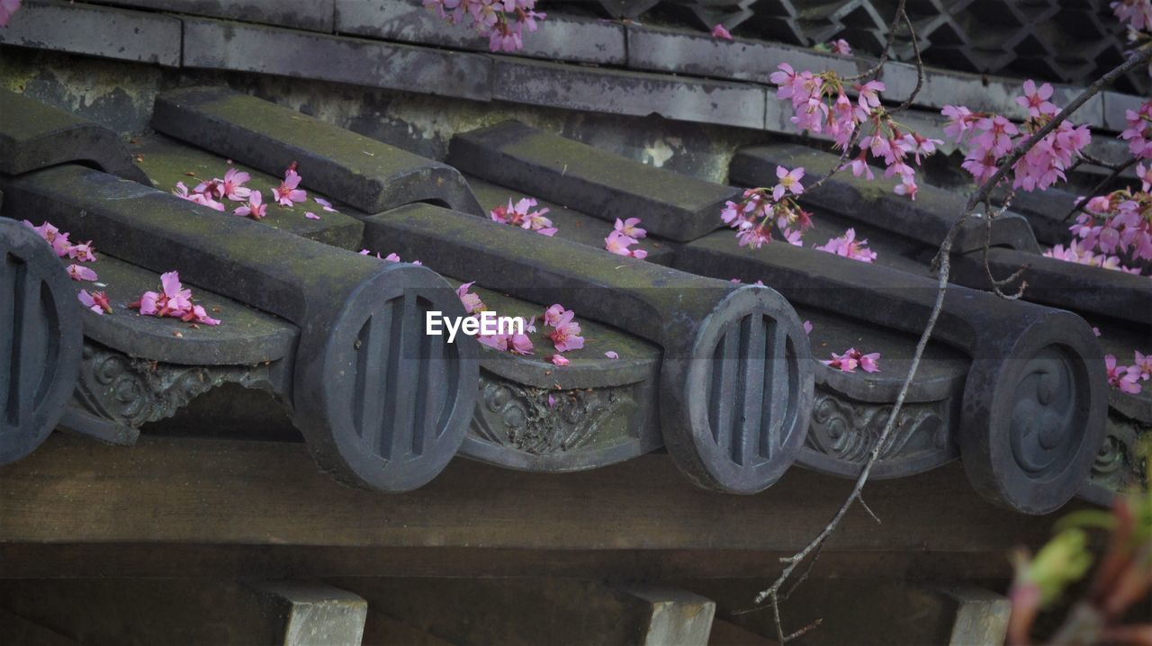 no people, in a row, day, outdoors, transportation, tire, land vehicle, flower, close-up
